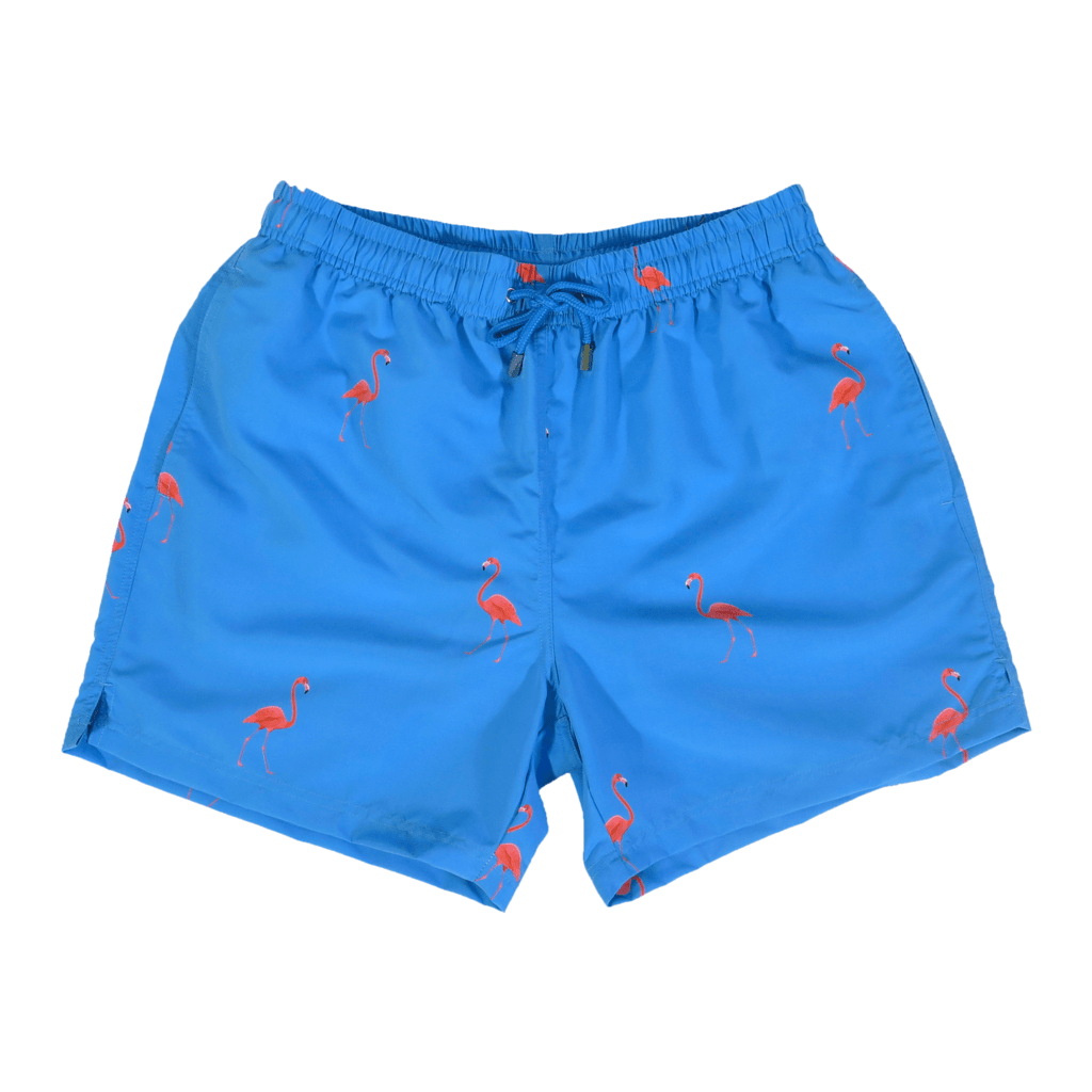d646b0906 Flamingo Swim Shorts – Men's designer swimwear by Decisive